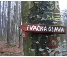 planinarimo_novagodina_007
