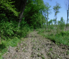 20210502_jugovaca_trail_070