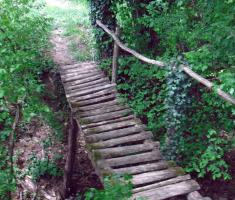 20210502_jugovaca_trail_092