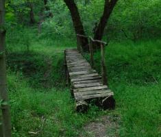20210502_jugovaca_trail_096