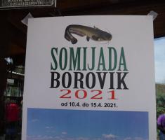 20210403_borovik_trail_144