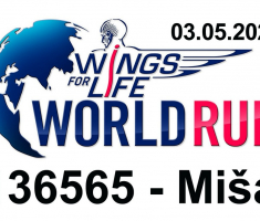 20200503_wings_for_life_010