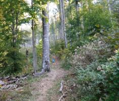 20181006_zdral_trail_074