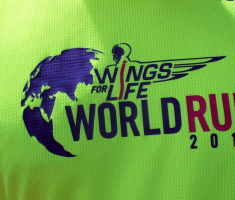 20170507_wings_for_life_021