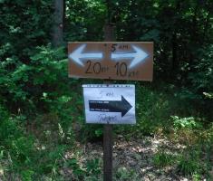 202006007_garcin_trail_059