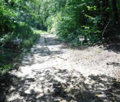 20180908_popisanac_trail_064