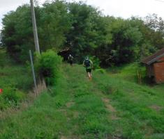 20180908_popisanac_trail_070