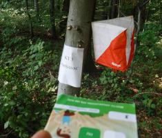 20180908_popisanac_trail_076