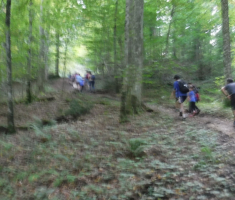 20180908_popisanac_trail_080