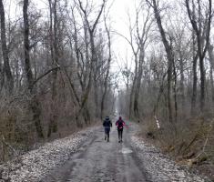 20180210_neptun_trail_023