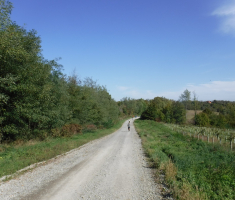 20201010_borovik_trail_070