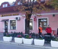 20171111_kutjevacko_martinje_009
