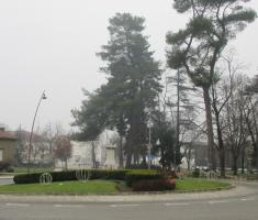 20161211_risnjak_003