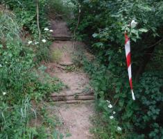 20210612_baranja_night_trail_114
