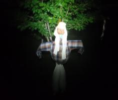 20210612_baranja_night_trail_147