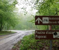 20190413_borovik_trail_074