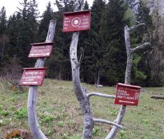 20170513_drazen_smit_slovenija_018