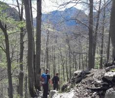 20170513_drazen_smit_slovenija_129