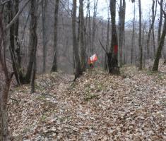 20210314_trail_of_sokol_077