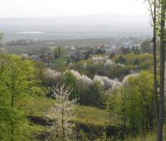 20180414_kutjevacka_obilaznica_169