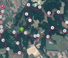 20190615_baranja_trail_night_run_005