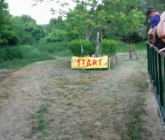 20190615_baranja_trail_night_run_132