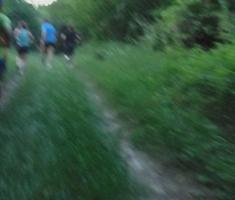 20190615_baranja_trail_night_run_148
