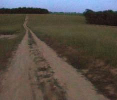 20190615_baranja_trail_night_run_156