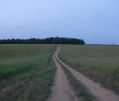 20190615_baranja_trail_night_run_157