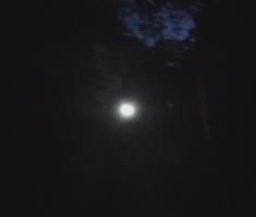 20190615_baranja_trail_night_run_160