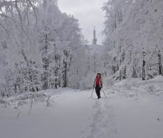 20181216_krdnija_024