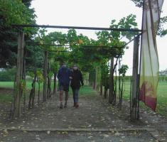 20201018_podunavlje_trail_058