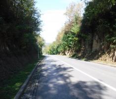 20201018_podunavlje_trail_126