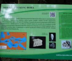20200719_nasicka_geoloska_staza_019