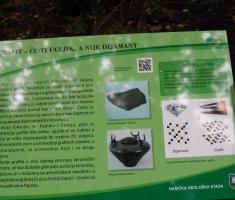 20200719_nasicka_geoloska_staza_125
