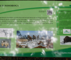 20200719_nasicka_geoloska_staza_209