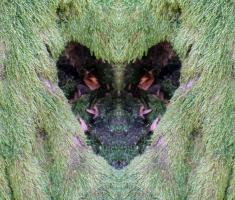 20141019_krndija_047