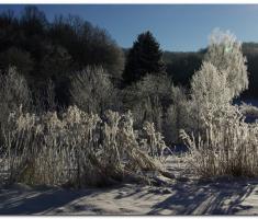 snijeg_001