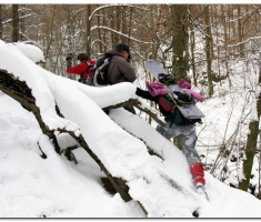 snijeg_006