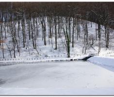 snijeg_011