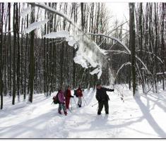 snijeg_015