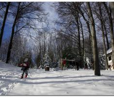 snijeg_019