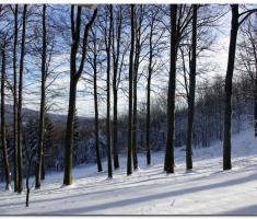 snijeg_020