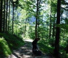 20180623_kamnisko-savinjske-alpe_grintovec_011