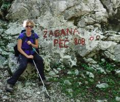 20180623_kamnisko-savinjske-alpe_grintovec_023