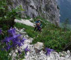 20180623_kamnisko-savinjske-alpe_grintovec_070
