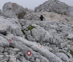 20180623_kamnisko-savinjske-alpe_grintovec_140
