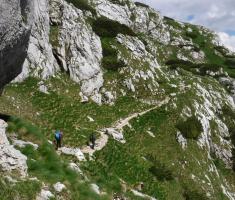 20180623_kamnisko-savinjske-alpe_grintovec_211