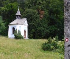 20180623_kamnisko-savinjske-alpe_grintovec_257