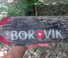 20170723_borovik_098